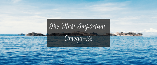 The Most Important Types of Omega 3